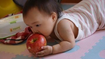りんごごろごろ-1.JPG
