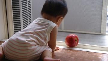 りんごごろごろ-3.JPG